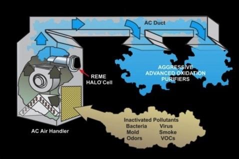 reme halo air purification virus reducer